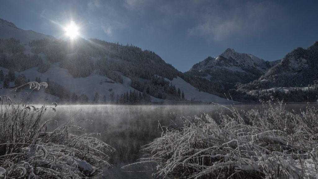 Winter am Schwarzsee