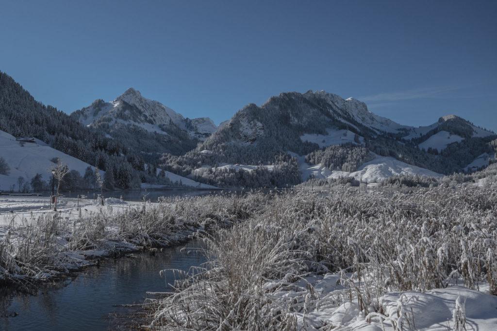 Lac Noir Fribourg
