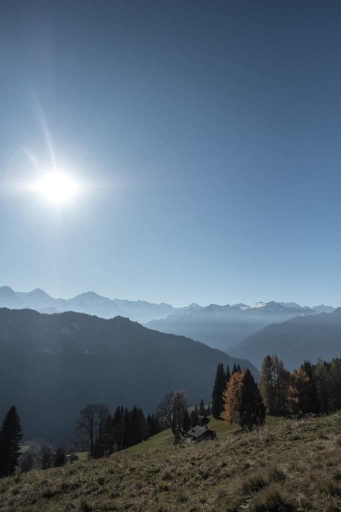 Aussicht auf die Berner Alpen