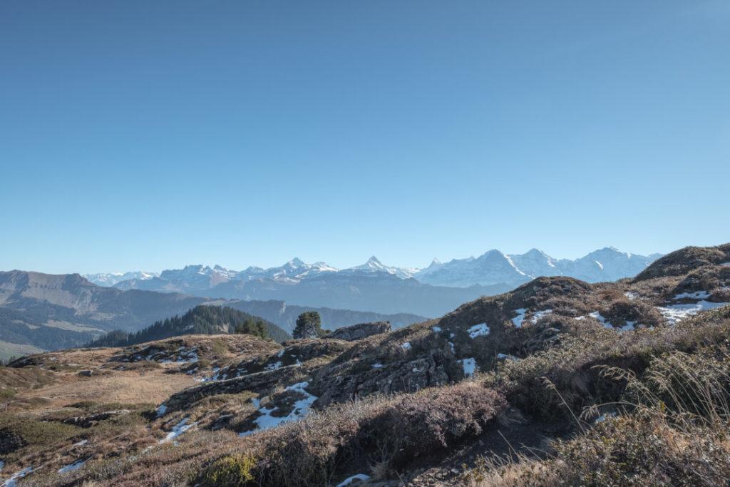 Aussicht auf die Berner Berge
