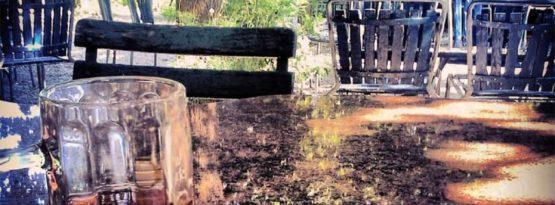 Bern Zehndermätteli im Garten