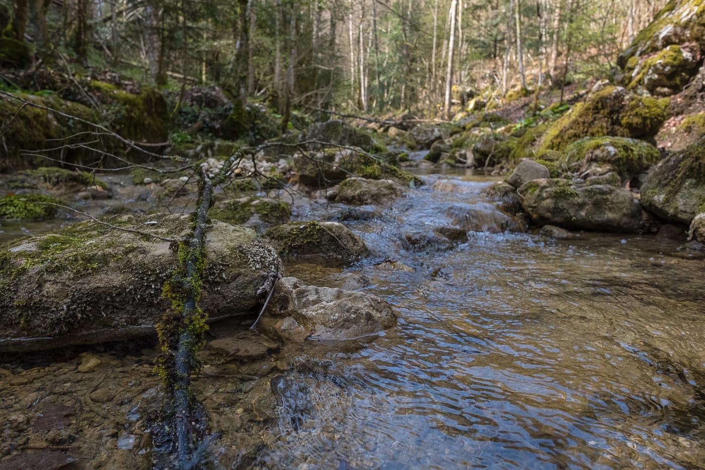 Cholersbach in der Tüfelsschlucht