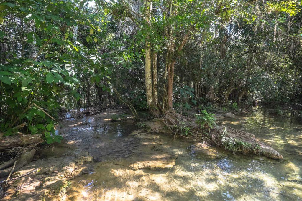 Wasser in El Nicho