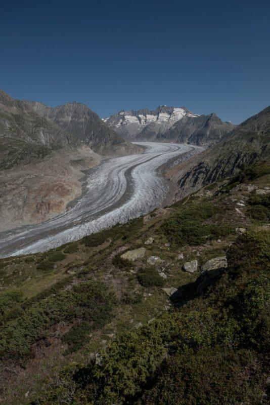 Aussichtspunkt am Moosfluh Aletscharena