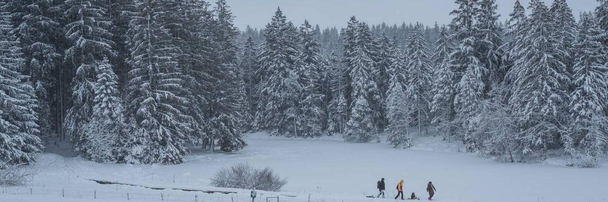 Schneewanderung am Etang de la Gruere