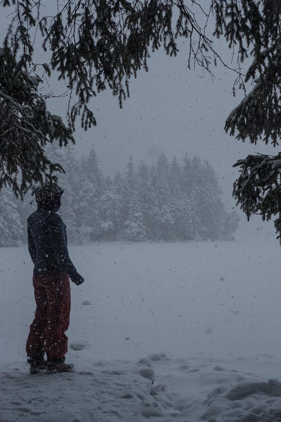 Am Ufer des Etang de la Gruere im Schnee
