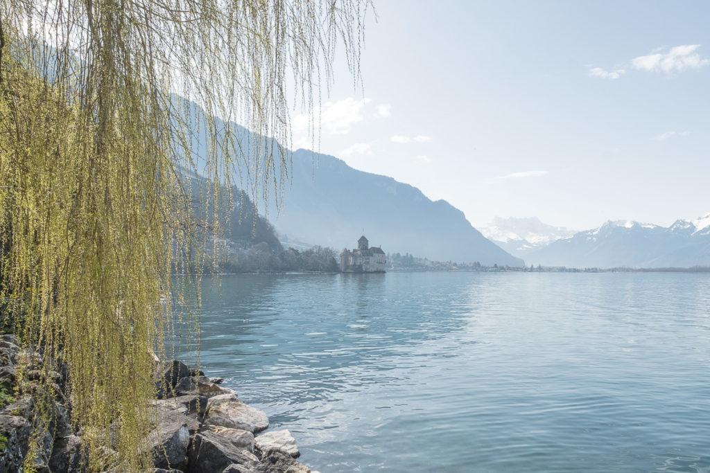 Frühling Schloss Chillon Genfersee