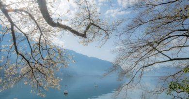 Frühlingsspaziergang: Von Montreux zum Schloss Chillon