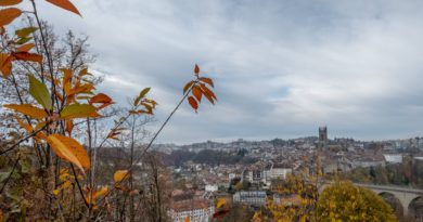 herbst in fribourg