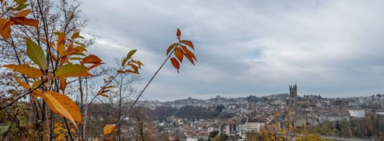 Fribourg Herbstwanderung