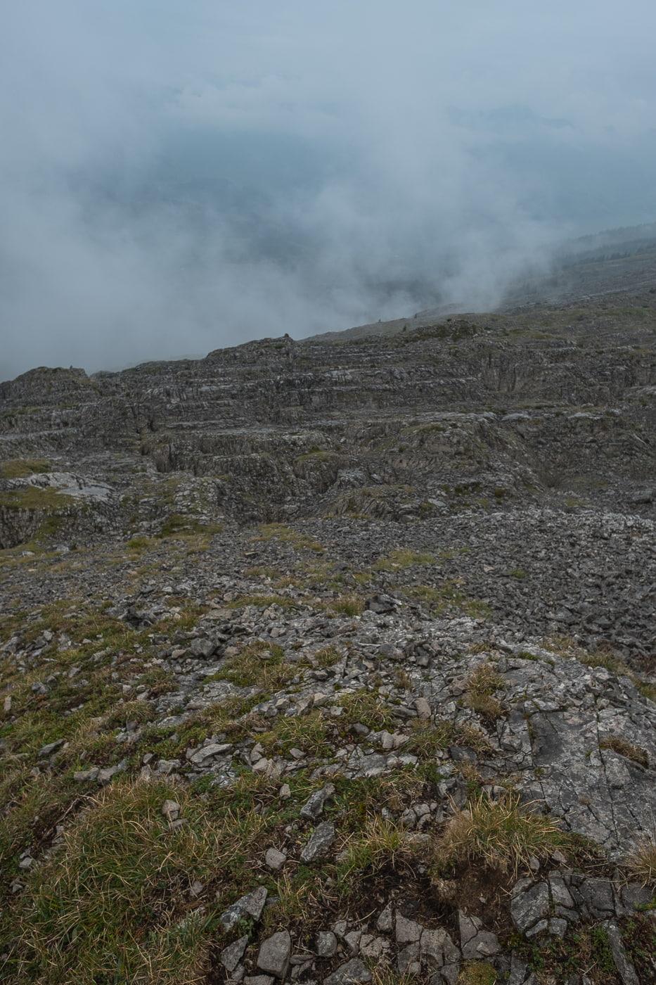 Karstlandschaft Vegetation