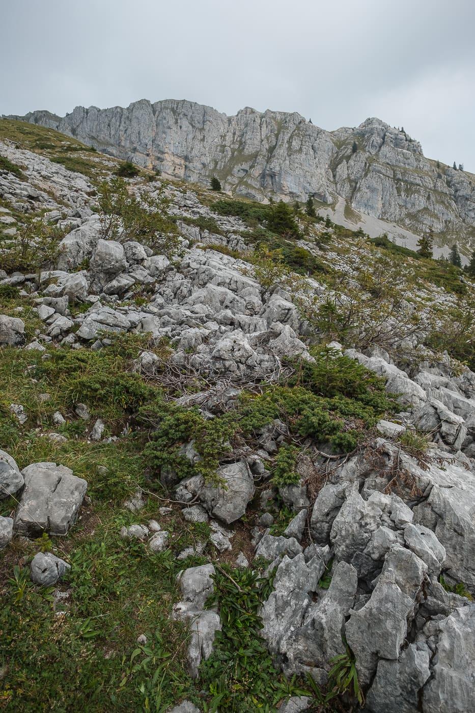 Landschaft Karst Kalkgestein