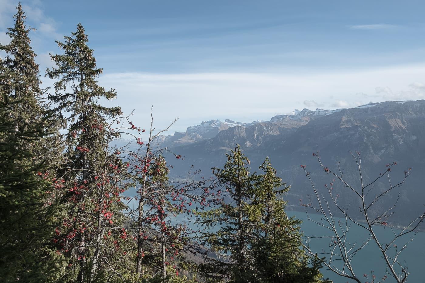 Rotflue auf dem Hardergrat Höhenweg
