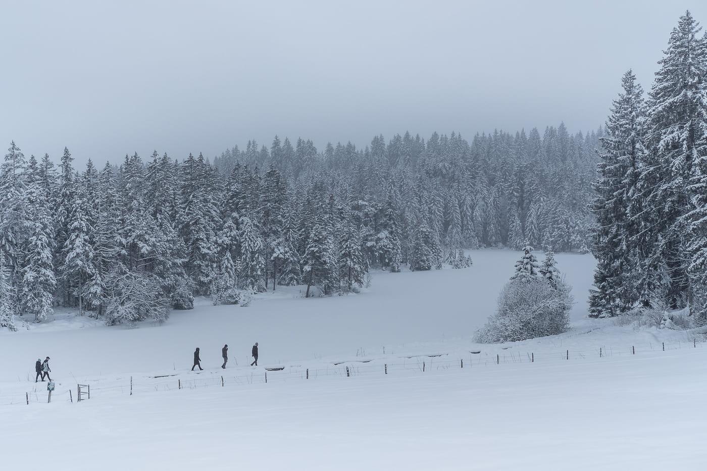 Schneelandschaft Freiberge Jura Schweiz