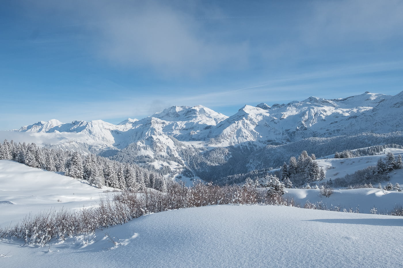 Schneelandschaft Kanton Bern