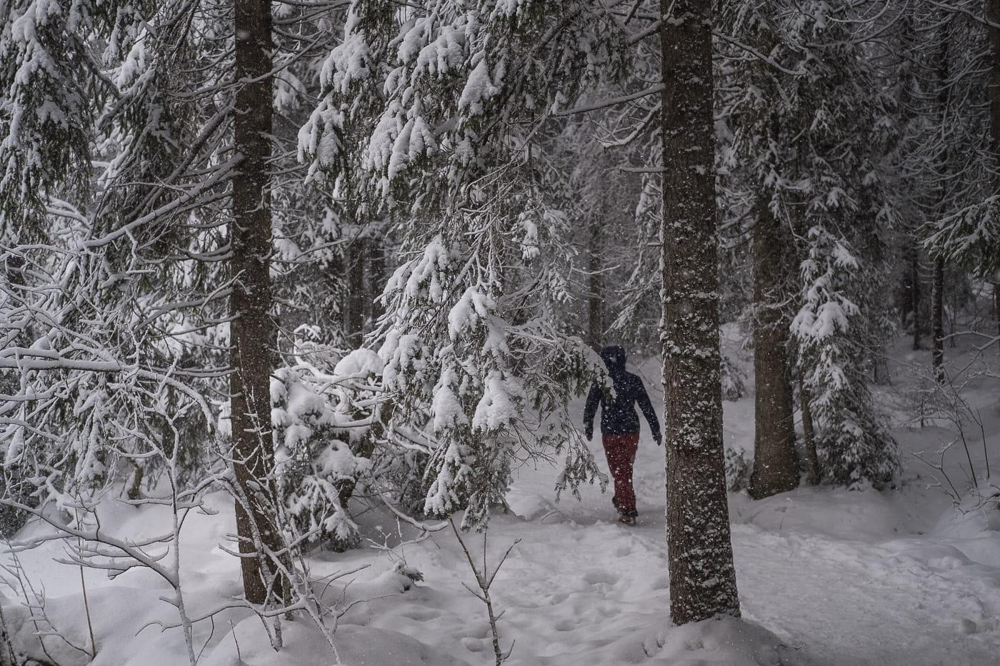 Schneespaziergang Moorsee Schweiz