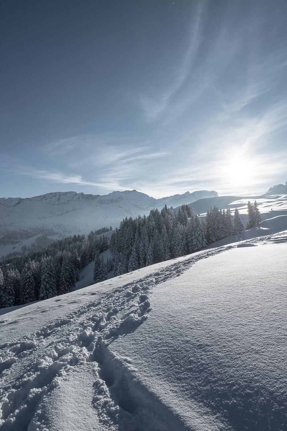 Schneewandern in Lenk Berner Oberland
