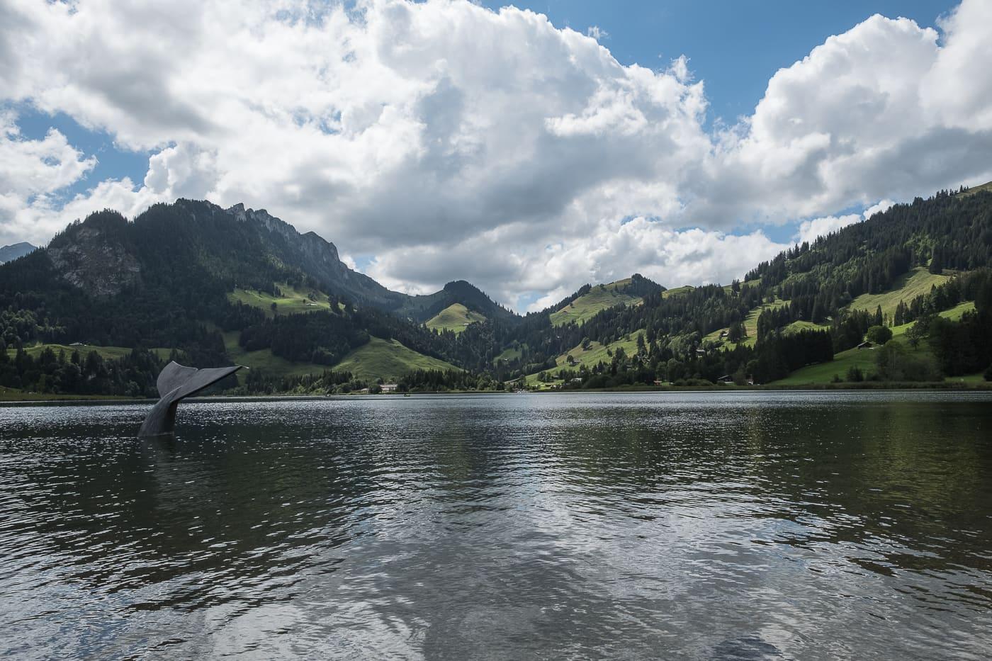 Schwarzsee im Sommer