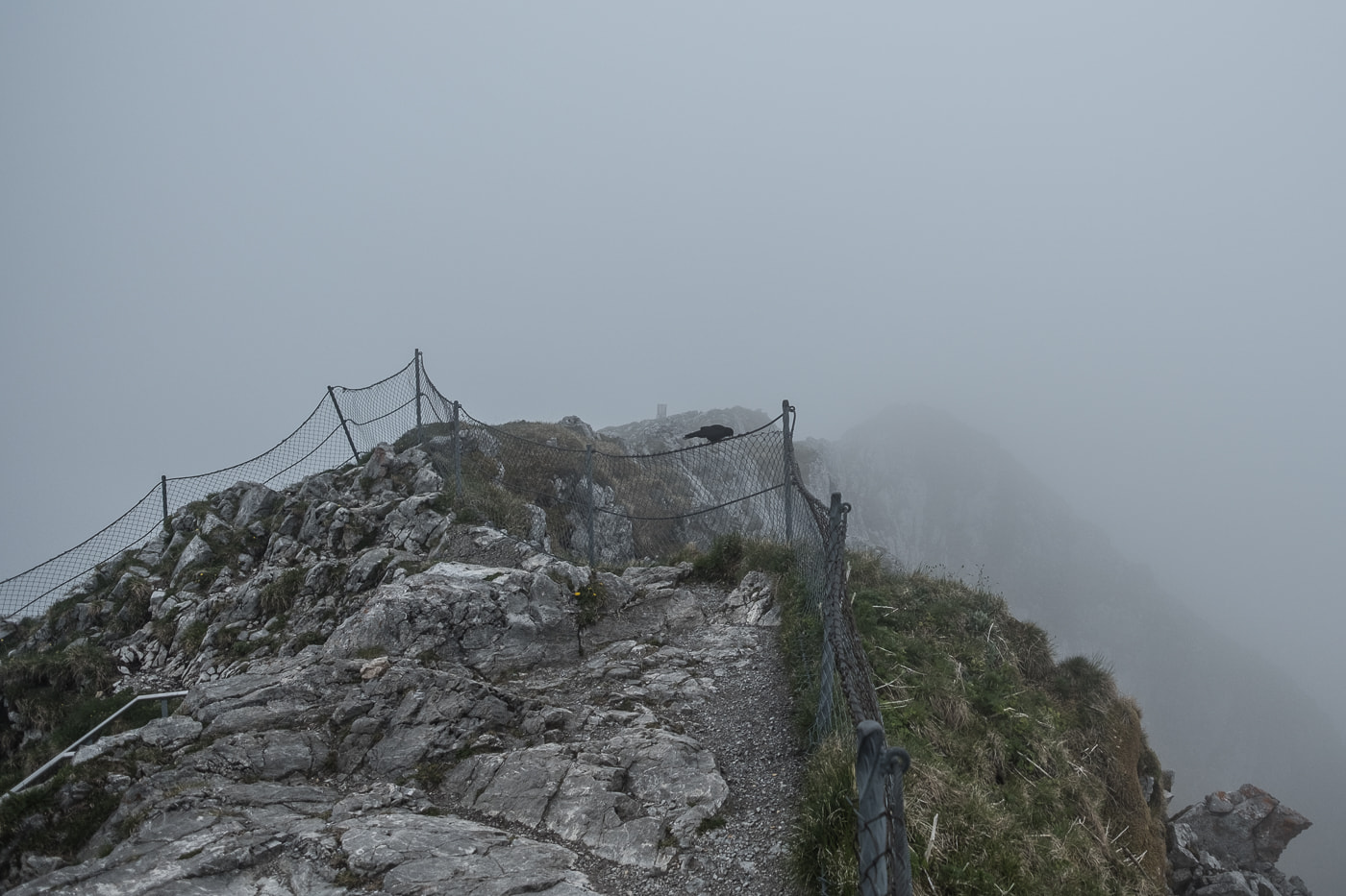 stockhorn gipfel im nebel