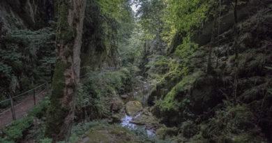 Twannbachschlucht