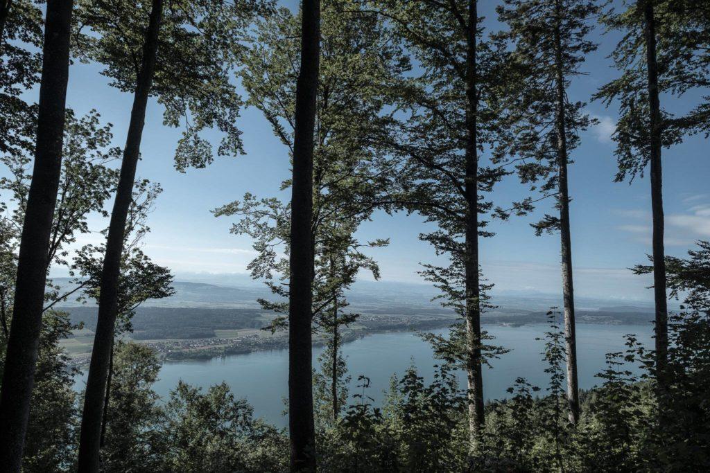 Von Magglingen zum Twannberg