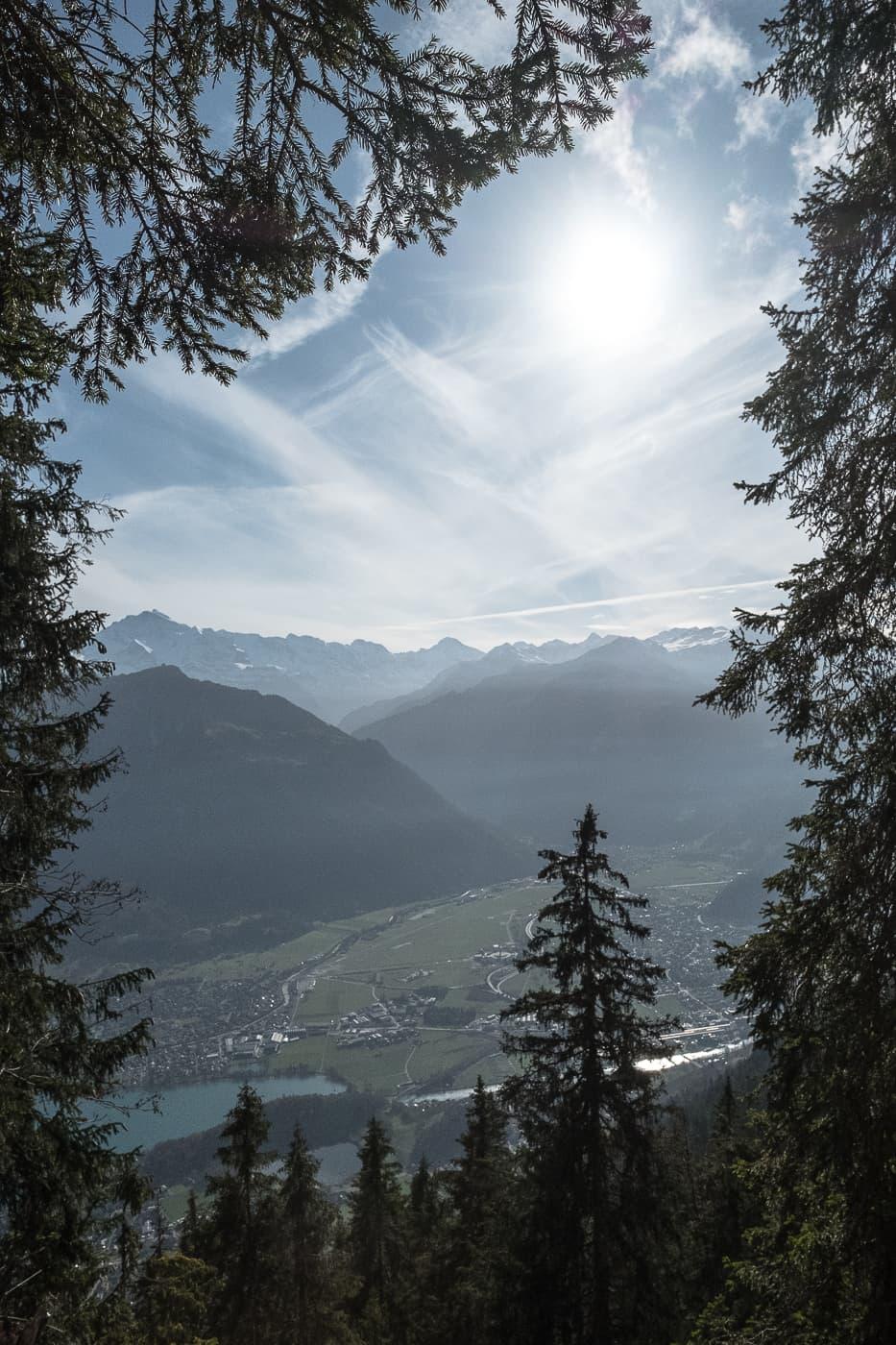 Waldrahmen für Bergpanorama