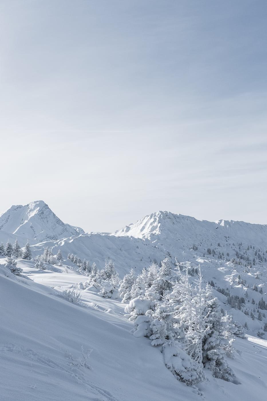 Weisse Winterwelt in Lenk Berner Oberland