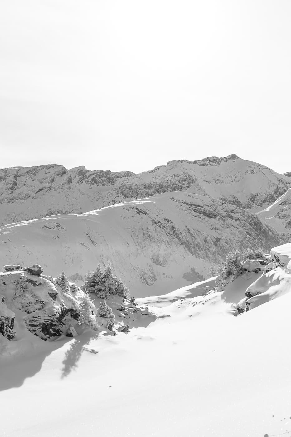 Winter Wonderland in Schwarzweiss